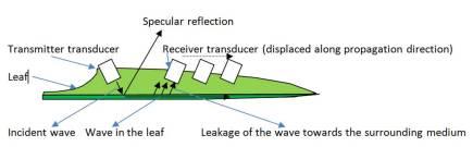 Fibre_guided_wave_set-up